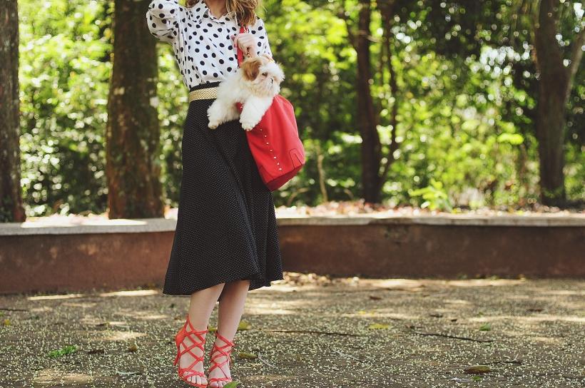 Camila Nardi - Fotos com Cachorros (12)