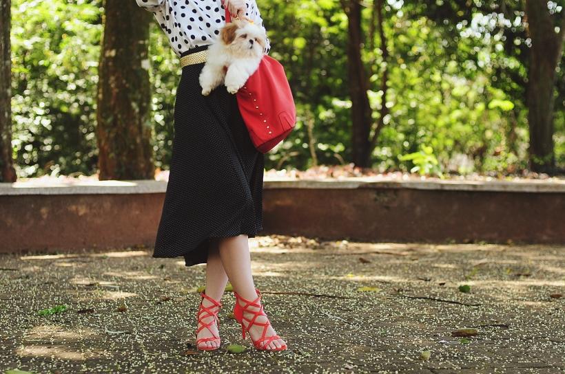 Camila Nardi - Fotos com Cachorros (13)