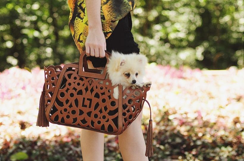 Camila Nardi - Fotos com Cachorros (18)