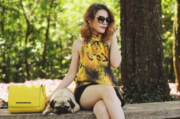 Camila Nardi - Fotos com Cachorros (26)