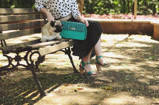 Camila Nardi - Fotos com Cachorros (3)