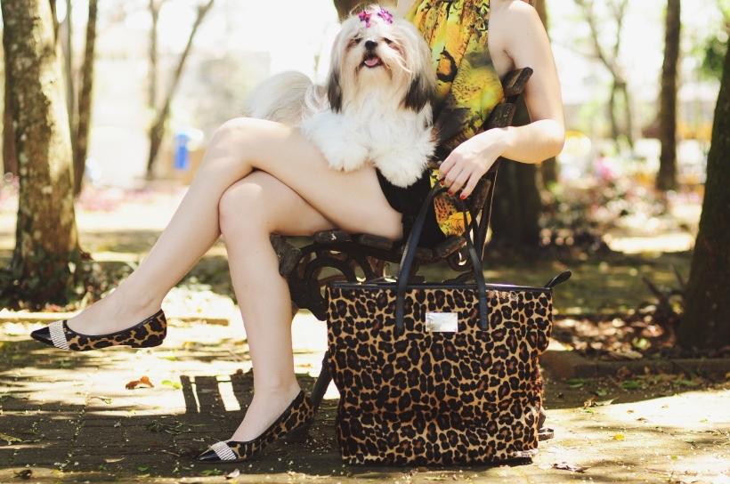 Camila Nardi - Fotos com Cachorros (33)