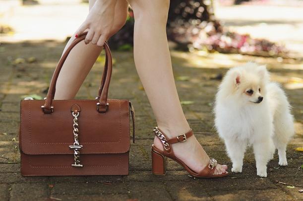 Camila Nardi - Fotos com Cachorros (46)