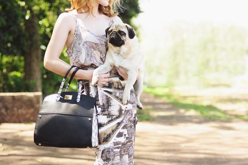 Camila Nardi - Fotos com Cachorros (51)