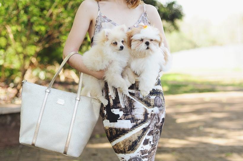 Camila Nardi - Fotos com Cachorros (54)