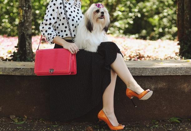 Camila Nardi - Fotos com Cachorros (9)